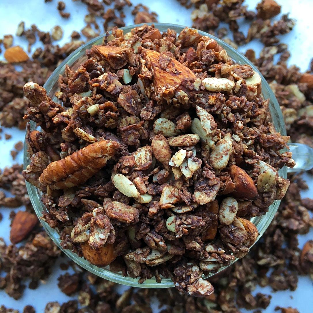 Chocolate Peppermint Granola 1